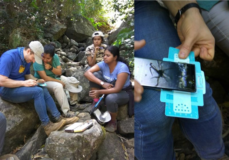 Observing samples in a makeshift lab in the field.